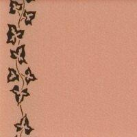 Supersatin apricot 075mm / 25m mit Efeurand schwarz