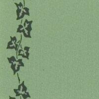 Supersatin hellgrün 125mm / 25m Efeurand schwarz